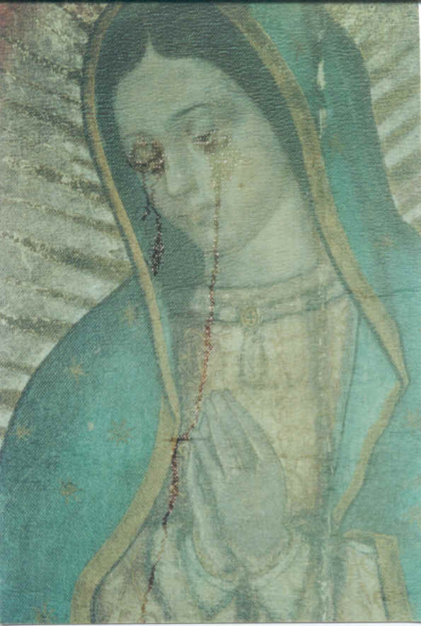 Missionary Image of Guadalupe Virgin